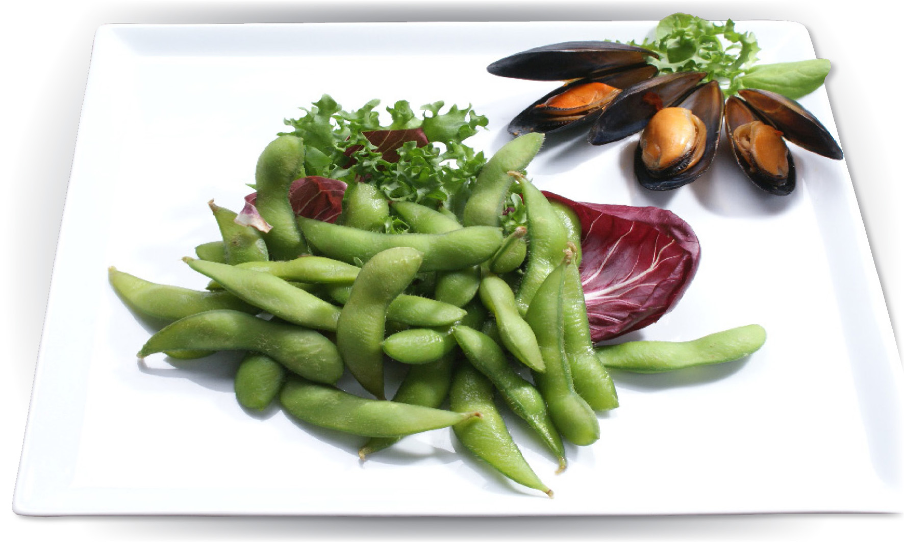 how to grow soybeans edamame